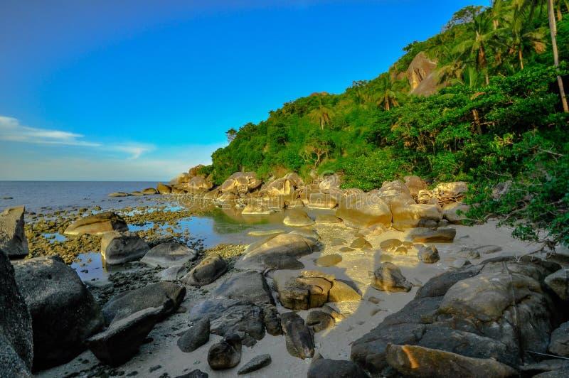Panoramisch tropisch strand met kokospalm. Koh Samui, royalty-vrije stock afbeeldingen