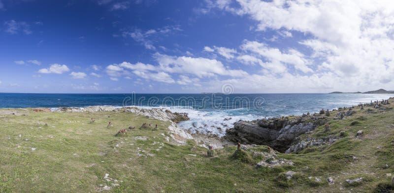 Panoramisch van Saint Martin, Sint Maarten: Caraïbische Stranden stock fotografie