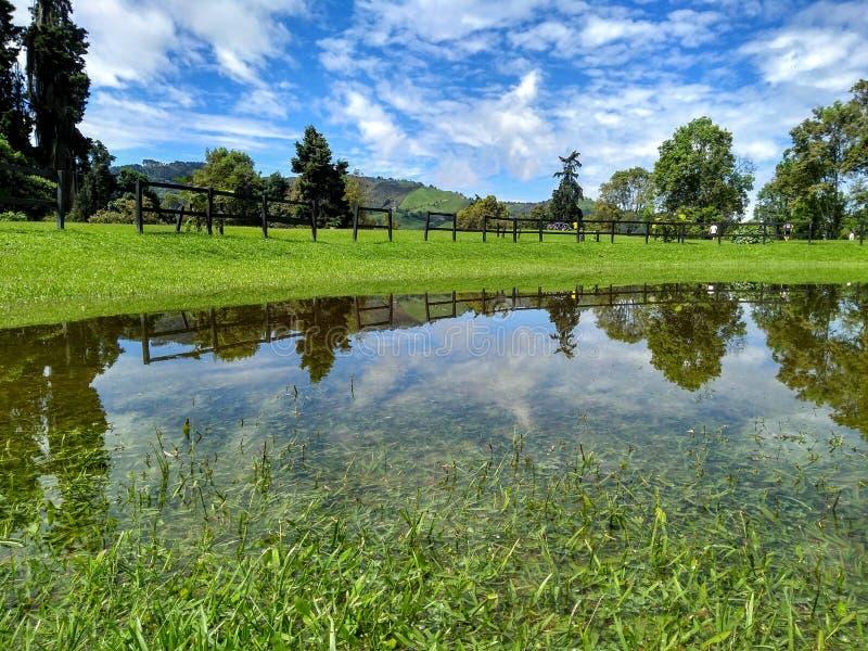 Panoramisch von der kolumbianischen Parklandschaft am sonnigen Tag lizenzfreie stockbilder