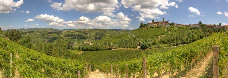 Panoramische Ansicht über Weinberge und Hügel in Italien. lizenzfreies stockbild