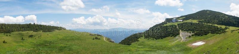 Panoramische Ansicht der alpinen Wiese in den österreichischen Alpen stockbild