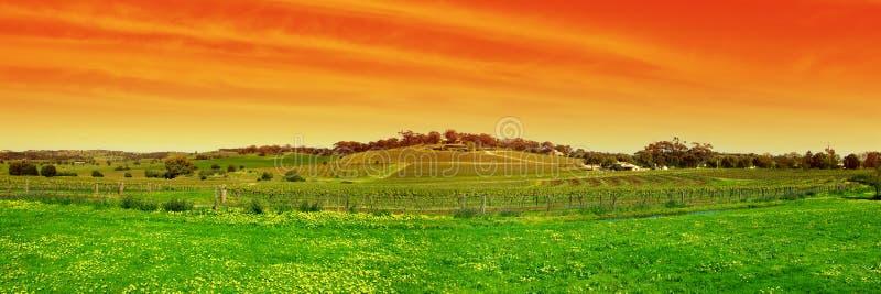Panoramische Barossa stock foto's