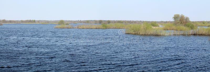Panoramische Landschaft mit Frühlingsüberschwemmung von Pripyat-Fluss nahe Borki, Zhytkavichy-Bezirk von Gomel-Region von Weißrus lizenzfreie stockfotos