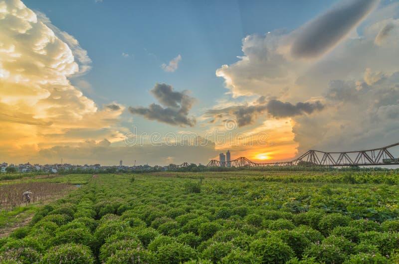 Panoramische malerische Landschaft langer Bien-Brücke schaut von einem Gemüsefeld in einem bunten Sonnenuntergang Vietnamesisch:  stockfoto
