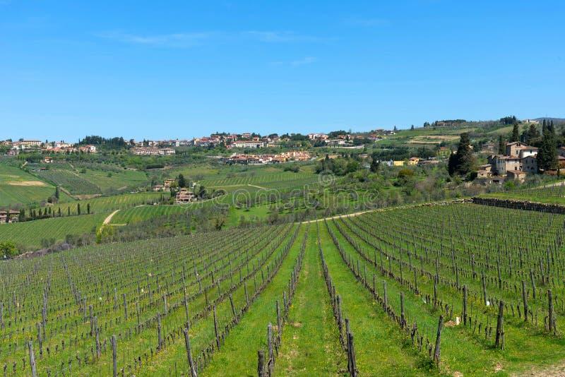 Panoramische schöne Ansicht von Wohngebieten Radda im Chianti und Weinberge und Olivenbäume in der Chiantiregion, Toskana, Italie stockfotografie
