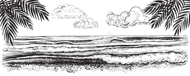 Panoramische strandmening Vectorillustratie van oceaan of overzeese golven Getrokken hand vector illustratie