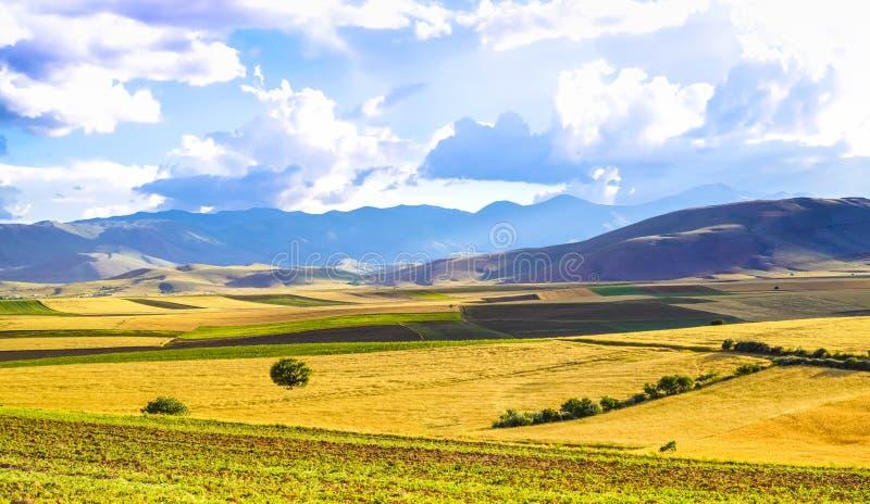 Panoramischer Hintergrund von schönen gelbgrünen Feldern mit blauem Himmel und Wolken - sonniger Tag in Kahramanmaras, die Türkei stockfoto
