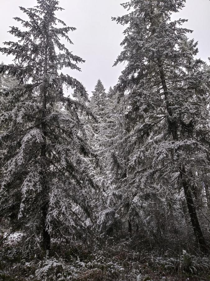 panoramischer Schuß (digitale Zusammensetzung) stockbild