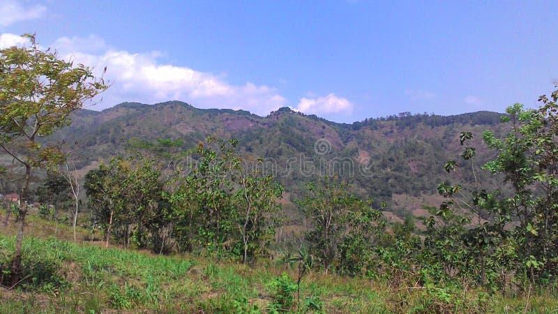 Panoramy gunung obrazy royalty free