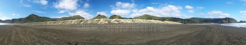 panoramy plażowy północny piha zdjęcia royalty free