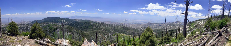 Panorma-Ansicht vom Berg Lemmon Tucson Arizona stockfoto