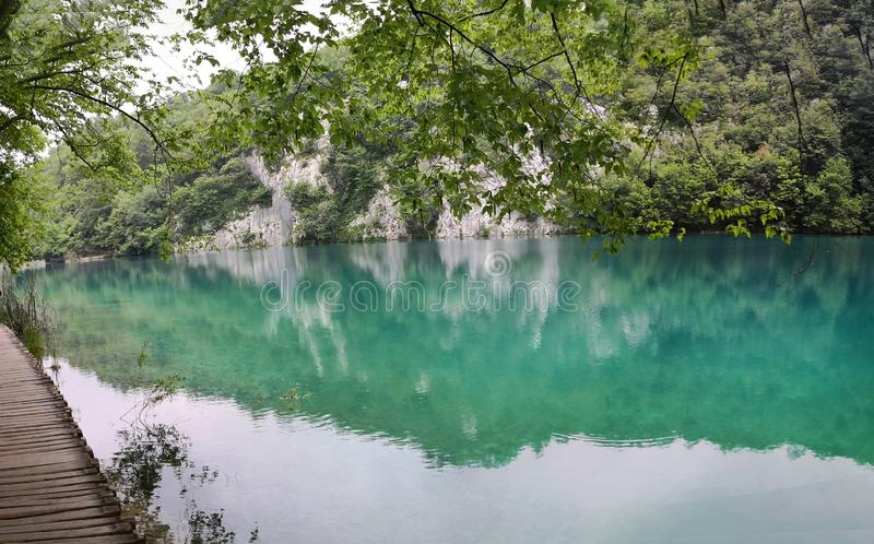 panramic взгляд озера в природном парке Plitvice, Хорватия стоковое фото rf