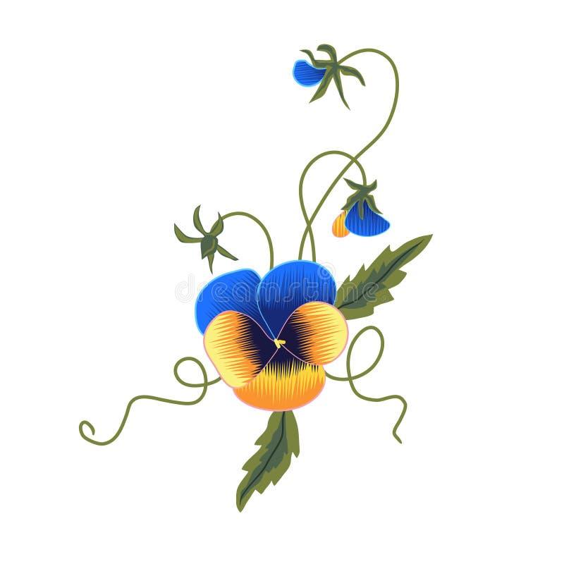 Download Pansies ilustração stock. Ilustração de bonito, flores - 10063157
