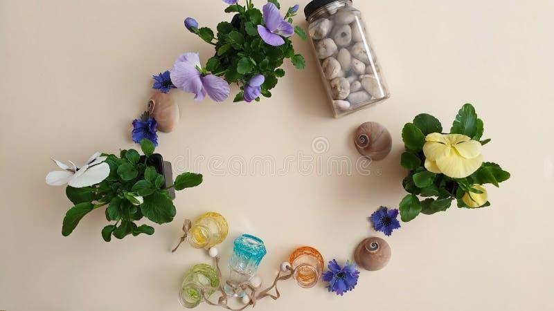 Pansies das flores de flor do potenciômetro da jardineira das flores dos escudos do mar das pedras da água de vidro das garrafas  imagens de stock royalty free