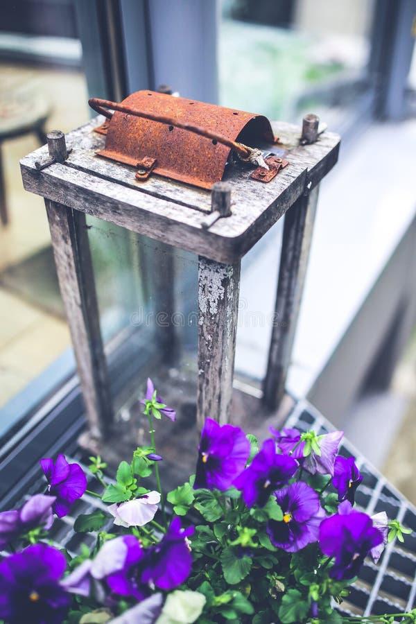 Pansies & lantern stock image