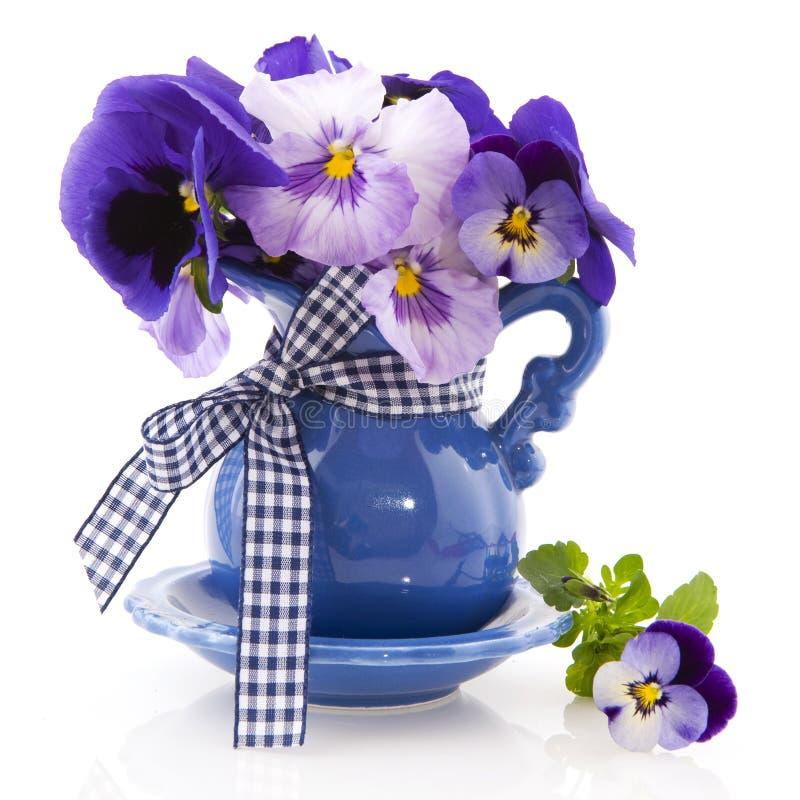 Pansies pequenos azuis do vaso fotografia de stock