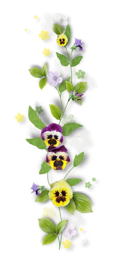 pansy цветков состава декоративный стоковые фото