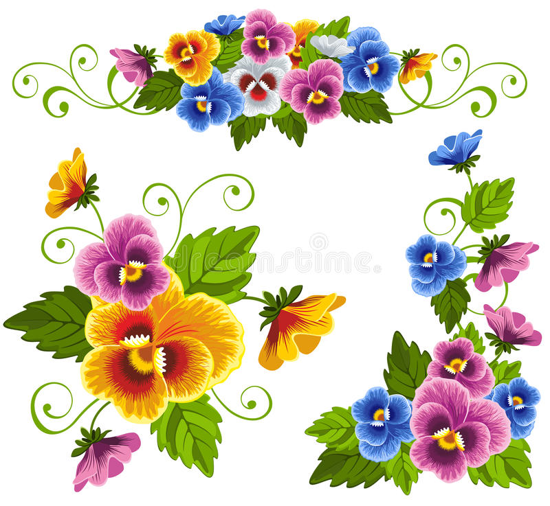 pansy stock illustrationer