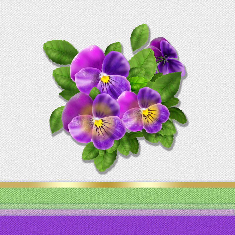 Download Pansy flowers card stock illustration. Illustration of beauty - 67126639