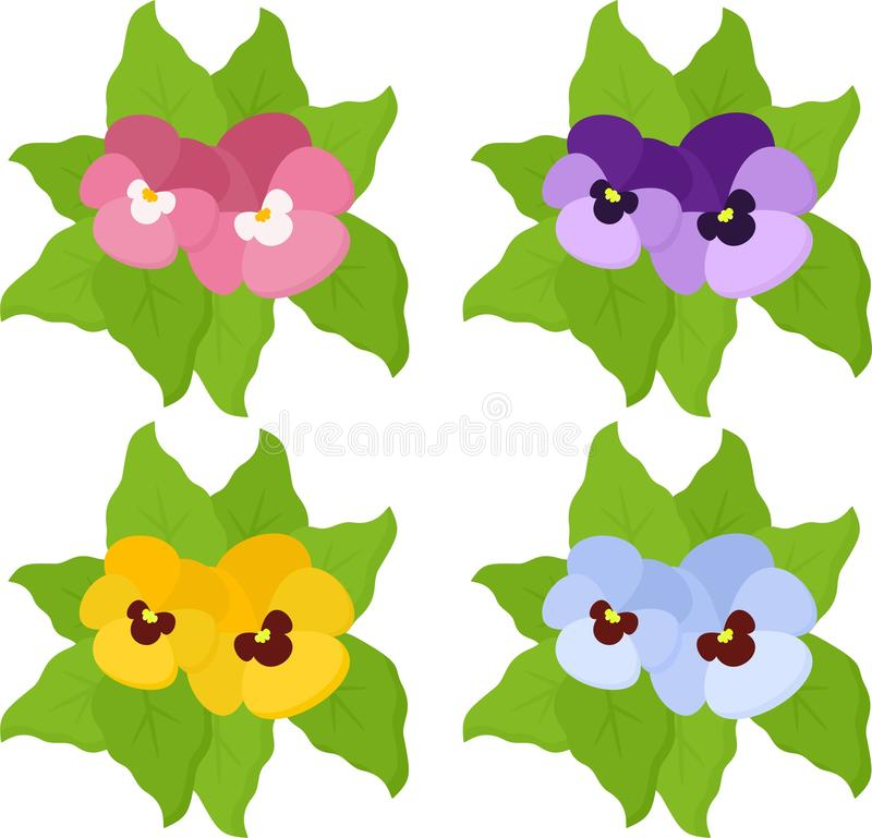 Pansy flowers or spring garden viola tricolor collection isolated on white background. Top view stock illustration