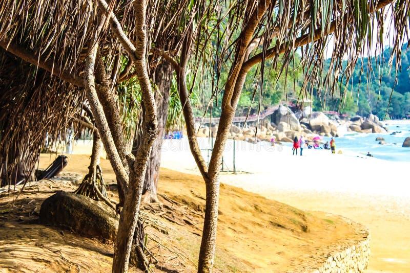 Pantai Teluk Chempedak fotos de stock