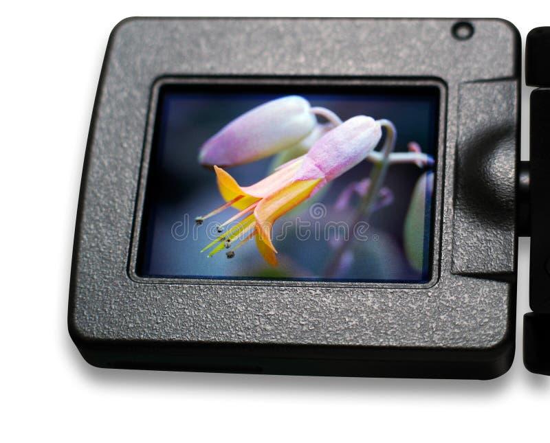 Pantalla del LCD fotos de archivo libres de regalías