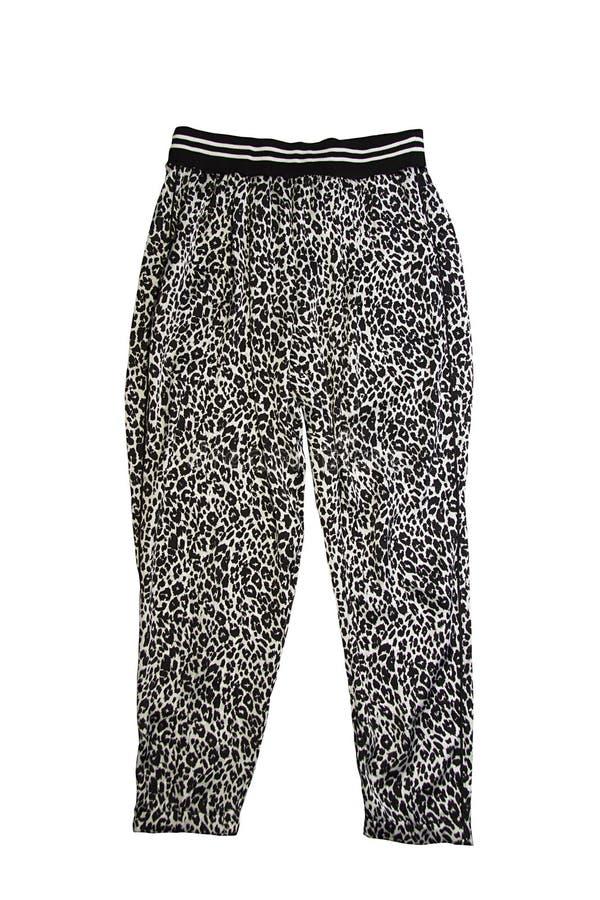 Pantalones del leopardo del deporte de la mujer fotos de archivo libres de regalías