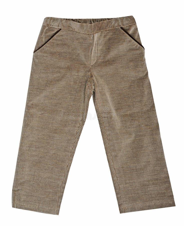 Pantaloni di fustagno grigi fotografia stock