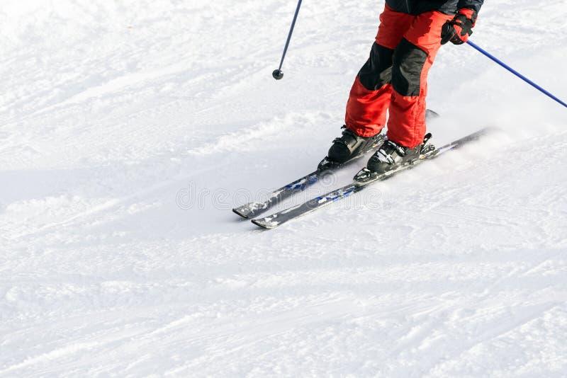 Pantaloni in discesa di rosso dell'ingranaggio del dettaglio dello sciatore della neve dello sci immagini stock