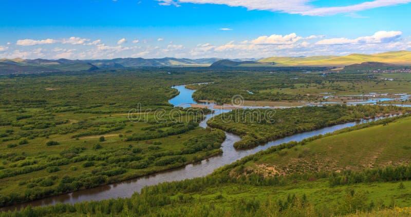 Pantanal imagens de stock royalty free