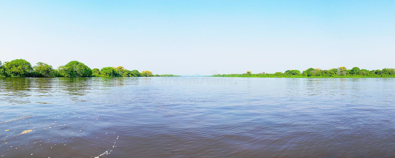 Pantanal landscape with the river and green vegetation around stock image