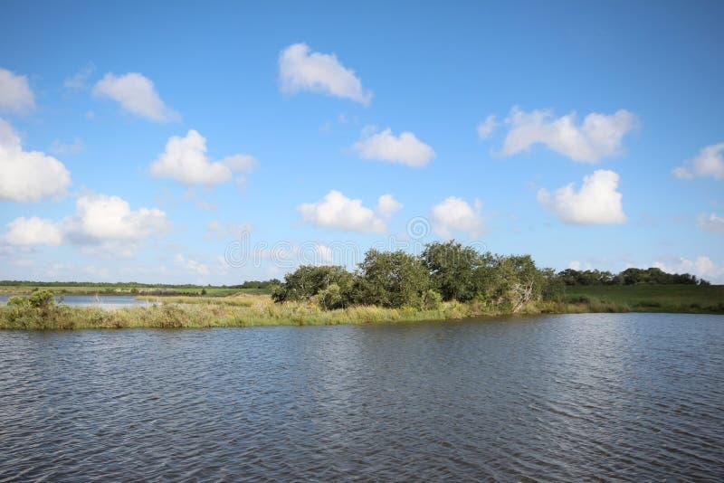 Pantano de Luisiana imagen de archivo