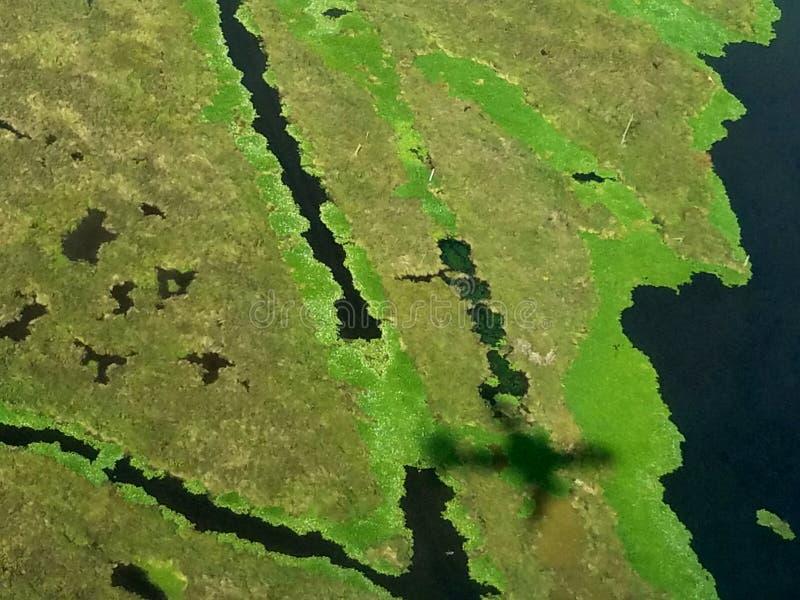 Pantanos costeros de Louisianas - área de New Orleans fotografía de archivo