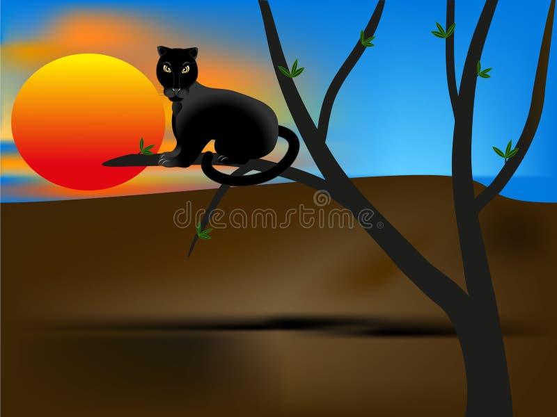 Pantera en una rama de árbol en la puesta del sol ilustración del vector