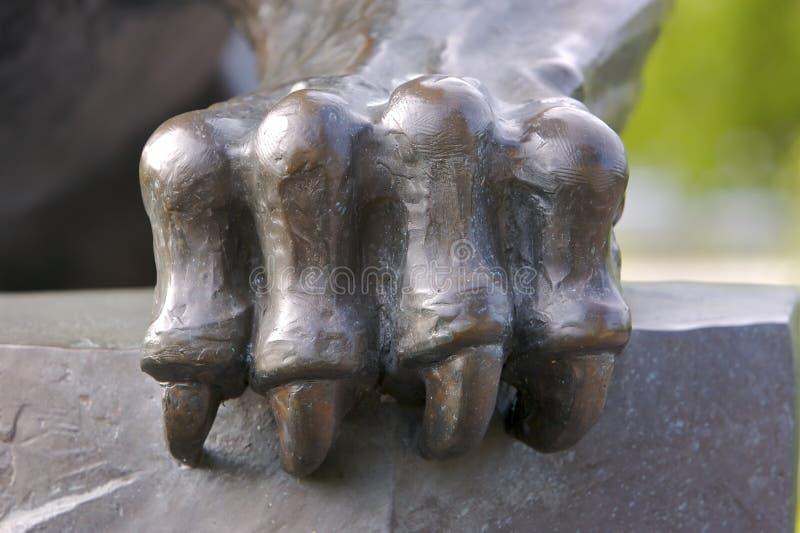pantera pazura * * zdjęcie royalty free