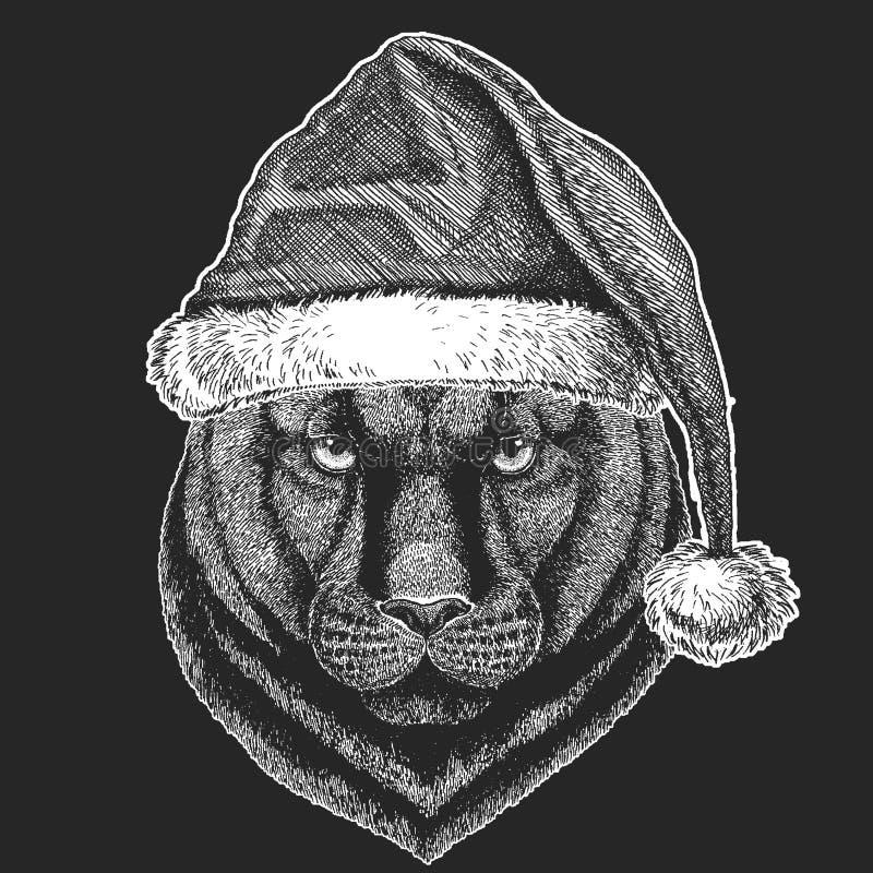 Pantera, puma, kuguar, Dzicy kotów boże narodzenia, nowego roku świętowanie Święty Mikołaj zimy kapelusz Xmas pióropusz royalty ilustracja