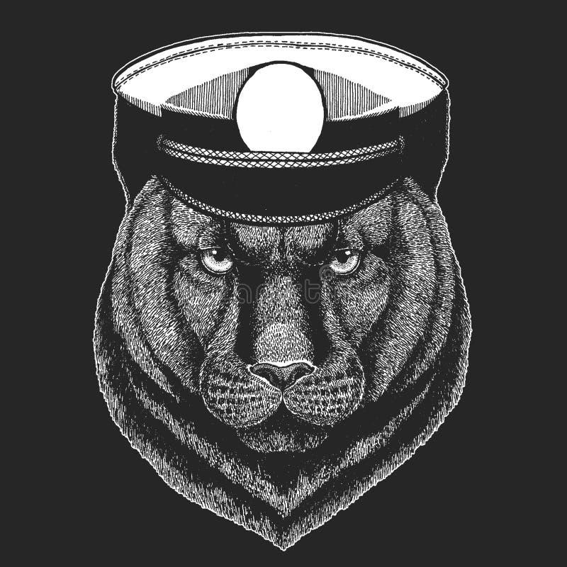 Pantera, puma, kuguar, Dzikiego kota Wektorowy druk dla dzieci Capitan, pirata zwierzę Odważny żeglarz Projekt dla dziecina ilustracji