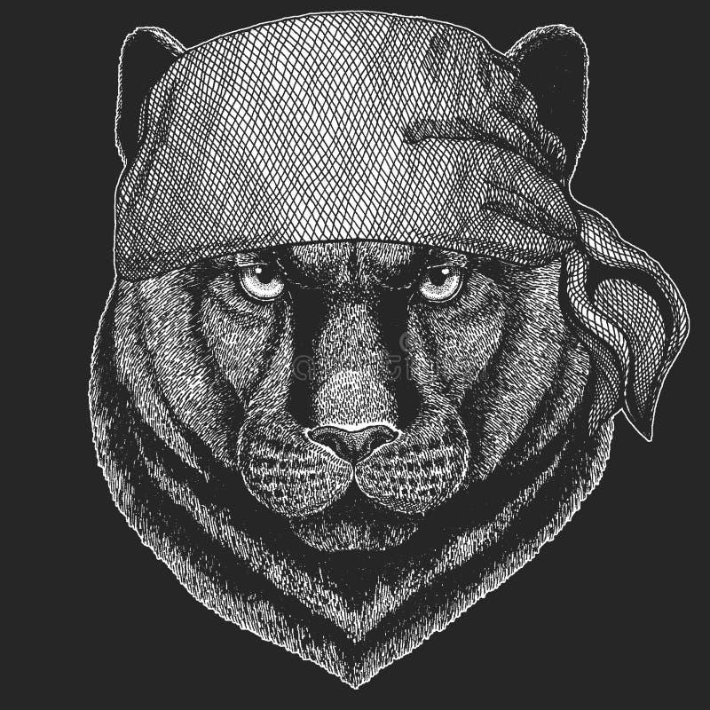 Pantery pumy kuguara Dzikiego kota Chłodno pirat, żeglarz, seawolf, żeglarz, rowerzysty zwierzę dla tatuażu, koszulka, emblemat,  ilustracji