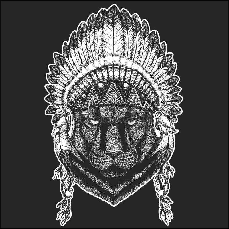 Pantery pumy kuguara Dzikiego kota rodowitego amerykanina Chłodno zwierzęcy jest ubranym indyjski pióropusz z piórka Boho szyka s ilustracji