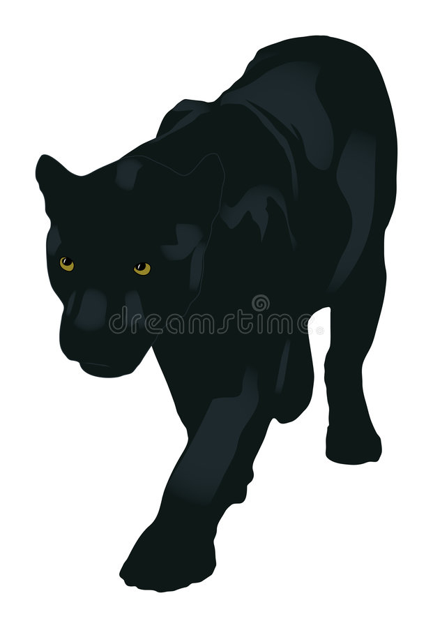 The panther stock illustration
