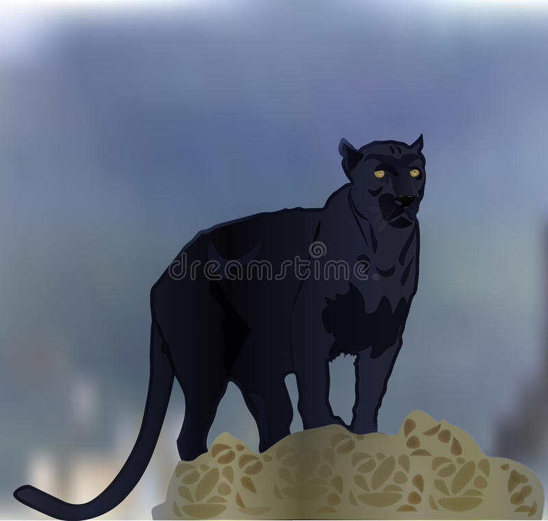 Panther royalty free stock photography