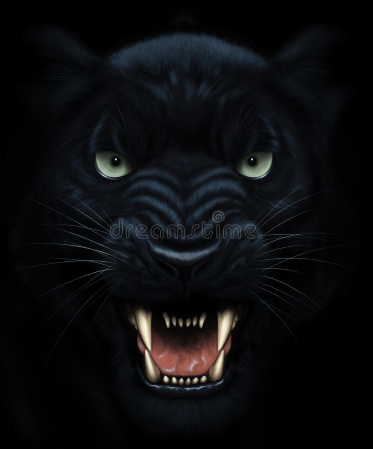 Panther face painting. Angry panther face in darkness. Digital painting vector illustration