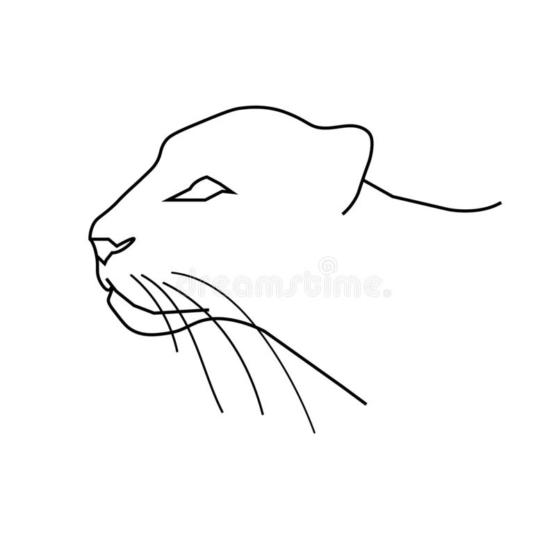 Panther or leopard`s head. Line art doodle sketch. Black outline on white background. Vector illustration. royalty free illustration