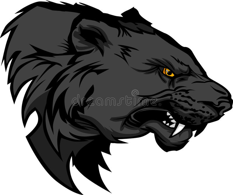 Growling Panther Face Stock Vector 585261455: Panther Mascot Logo Stock Vector. Illustration Of Face