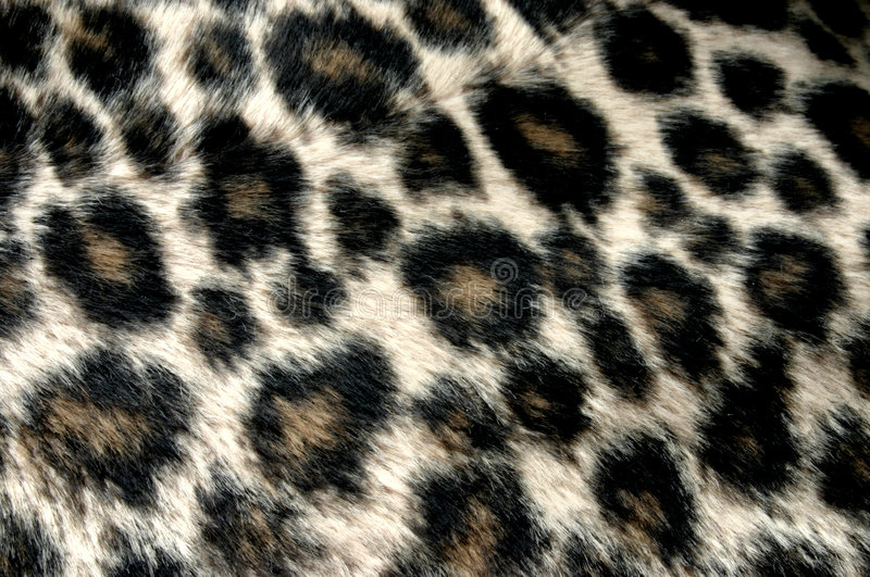 Panther pattern royalty free stock images