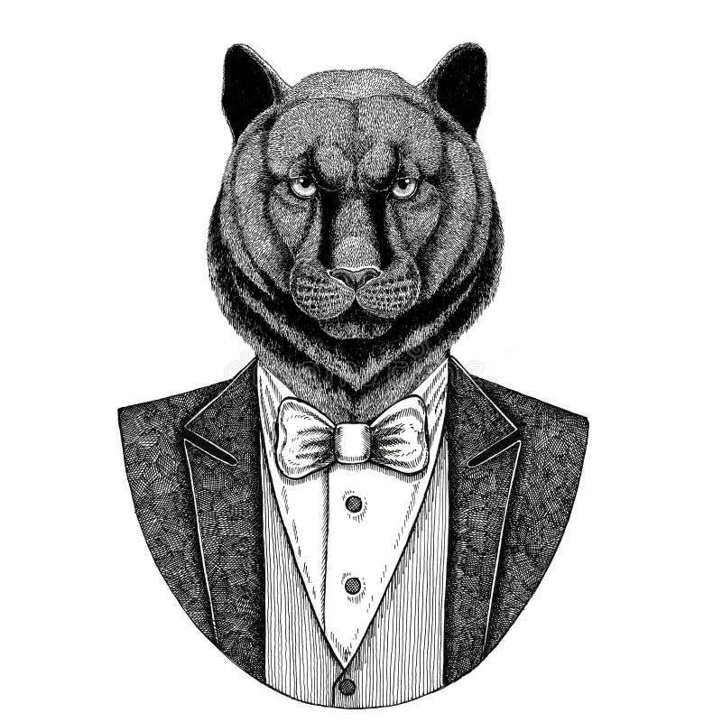 Panther-Puma-Puma wilde catHipster Tierhand gezeichnete Illustration für Tätowierung, Emblem, Ausweis, Logo, Flecken, T-Shirt stock abbildung