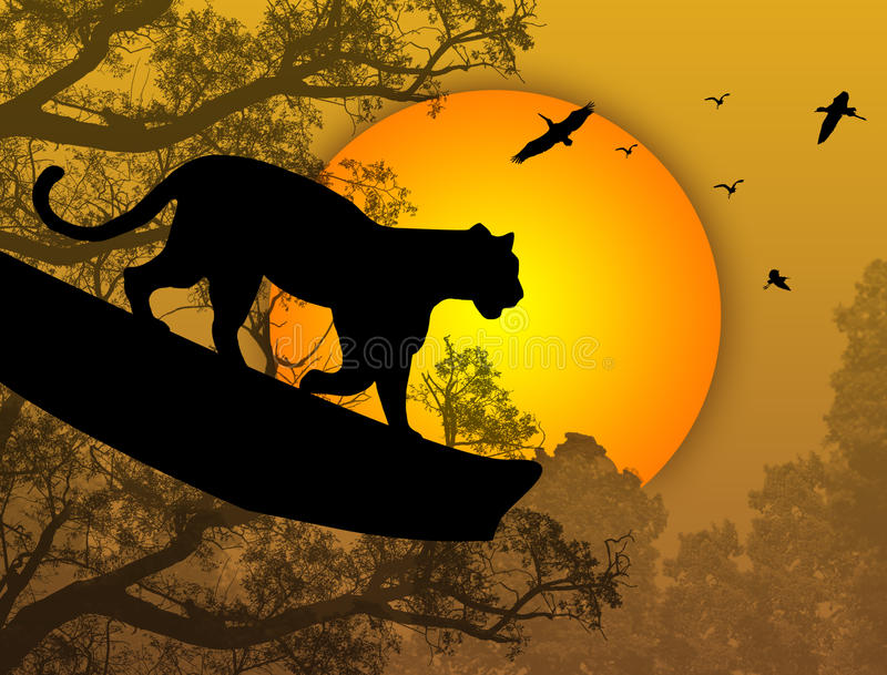 Panther on a tree royalty free illustration