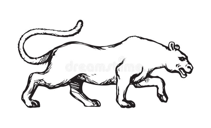 panther Vector tekening vector illustratie