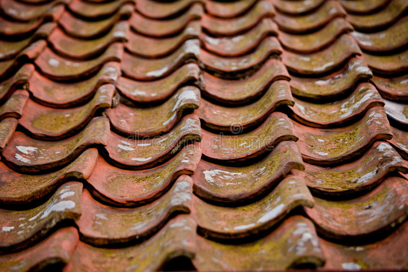 Pantiles on a roof royalty free stock image
