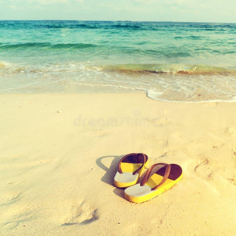 Pantoffels op tropisch strand in de zomer stock foto